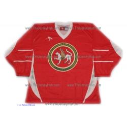 Ak Bars Kazan 2013-14 Russian Hockey Red Practice Jersey