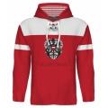 Team Austria Hooded Sweatshirt Dark 2