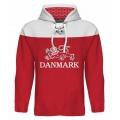Team Denmark Hooded Sweatshirt Dark 2